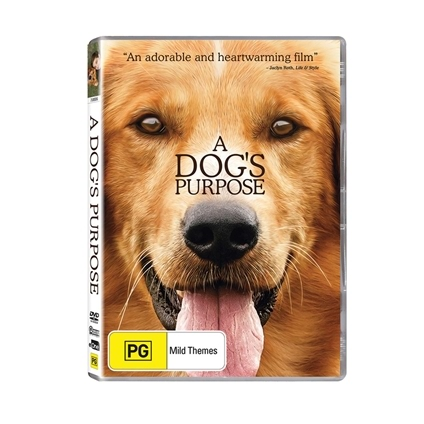 A Dog's Purpose (2017) or A Dog's Journey (2019)